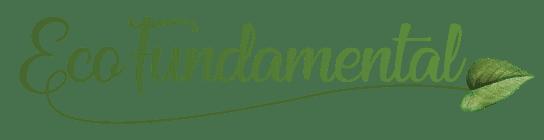 EcoFundamental