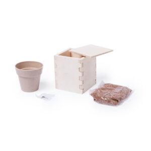 Kit para semear com vaso biodegradável