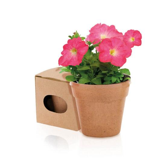 vaso biodegradável bege com sementes