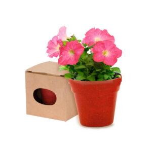 vaso biodegradável vermelho com sementes