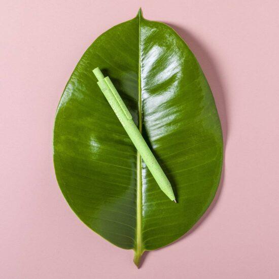 caneta verde de palha de trigo em cima de folha